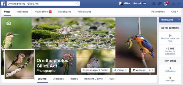 page facebook ornitho.photos